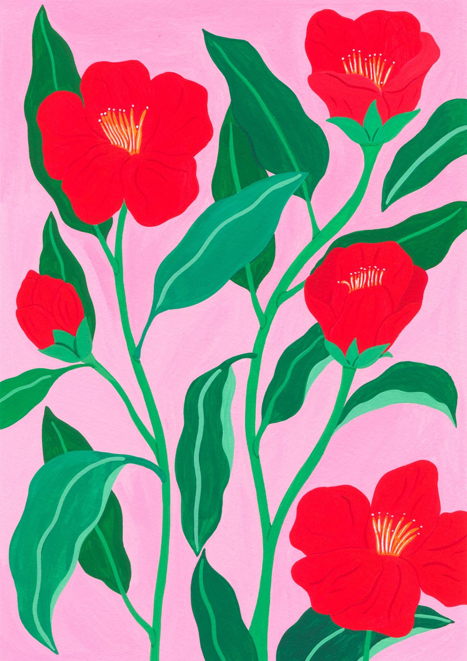 Marie-pellet-illustrations-gouache-Camellias-hongkongensis-fleurs-projet-personnel-portfolio