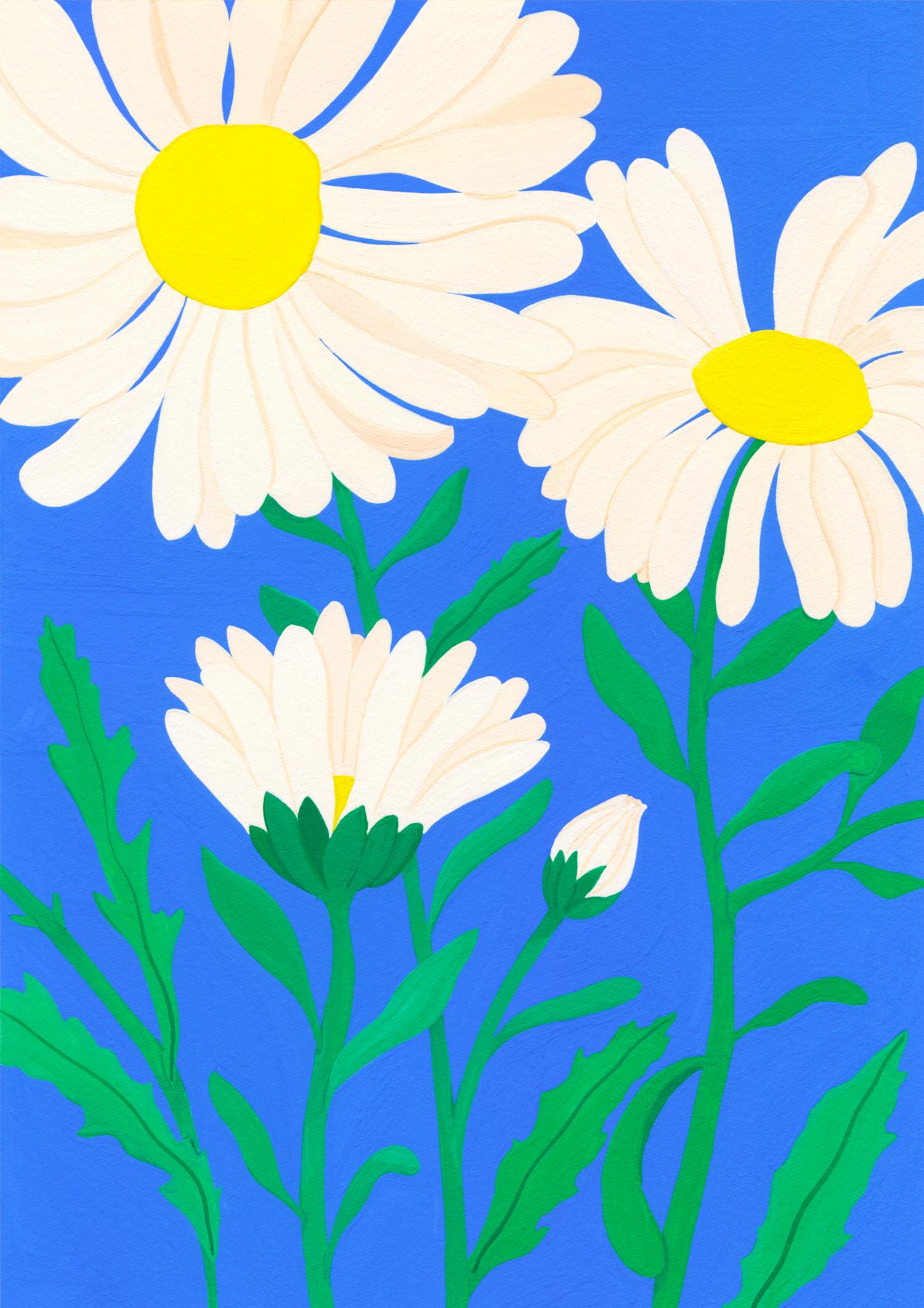 Marie-pellet-illustrations-gouache-daisy-fleurs-projet-personnel-portfolio