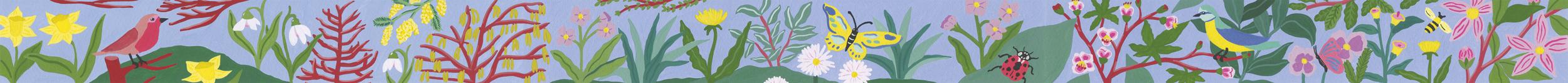 La petite fabrique - Edition - illustration - Marie Pellet - presse - éditorial - printemps - nature - guetteur de printemps - plantes - fleurs - insectes - oiseaux - forêts - frise - motifs